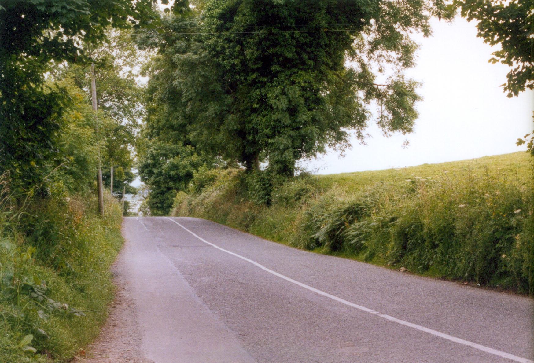 Gravity Hill near Carlingford, Cooley Peninsula, County Louth, Ireland.