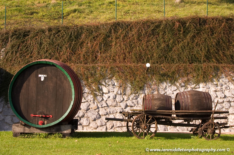 Wine barrels near Bizeljsko.