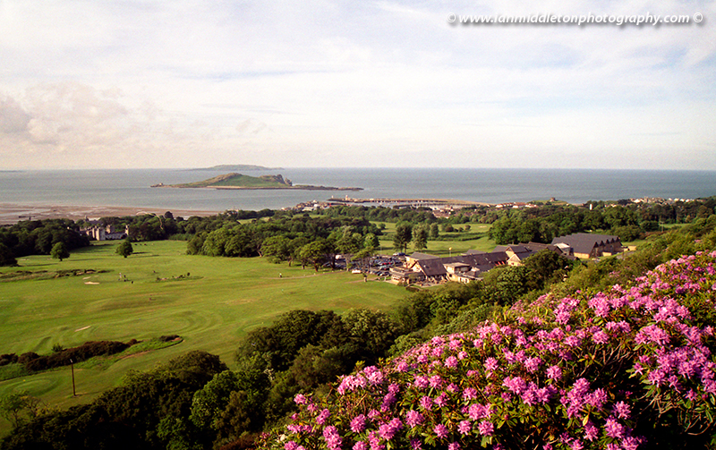 Deer Park Gardens and view over North Dublin Bay